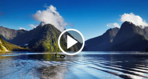 poisoning-paradise-new-zealand