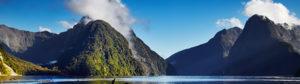 NZ 100% pure 1080 poison