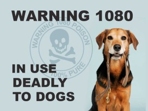 1080 Deadly to Dogs